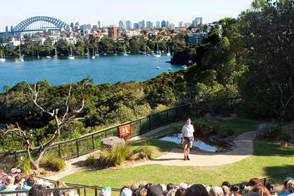 Year 7 Science Taronga Zoo Excursion