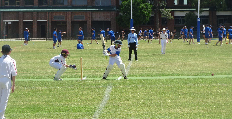 MCS Cricket Grand Finals