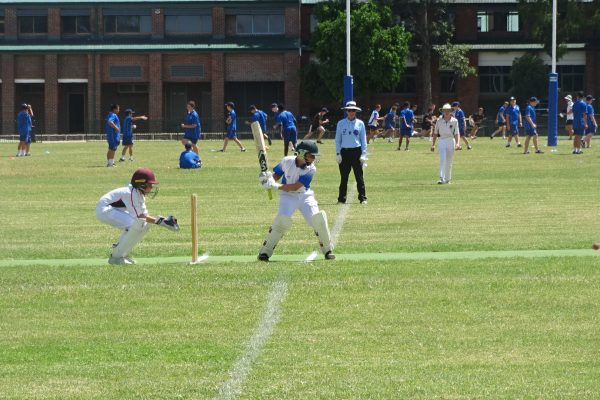 MCS Cricket Grand Finals