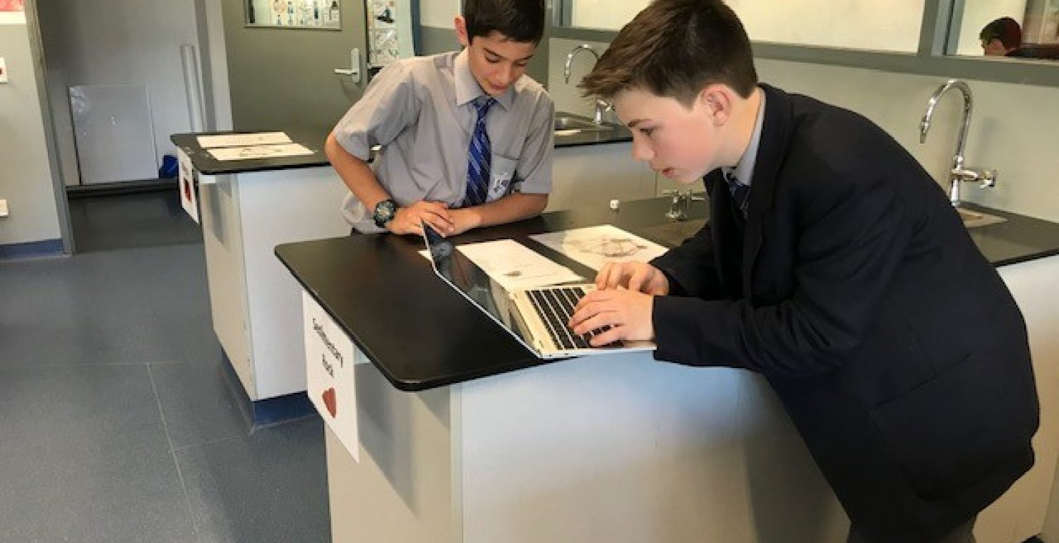 Year 7 Science – Collaborating to Master the Rock Cycle