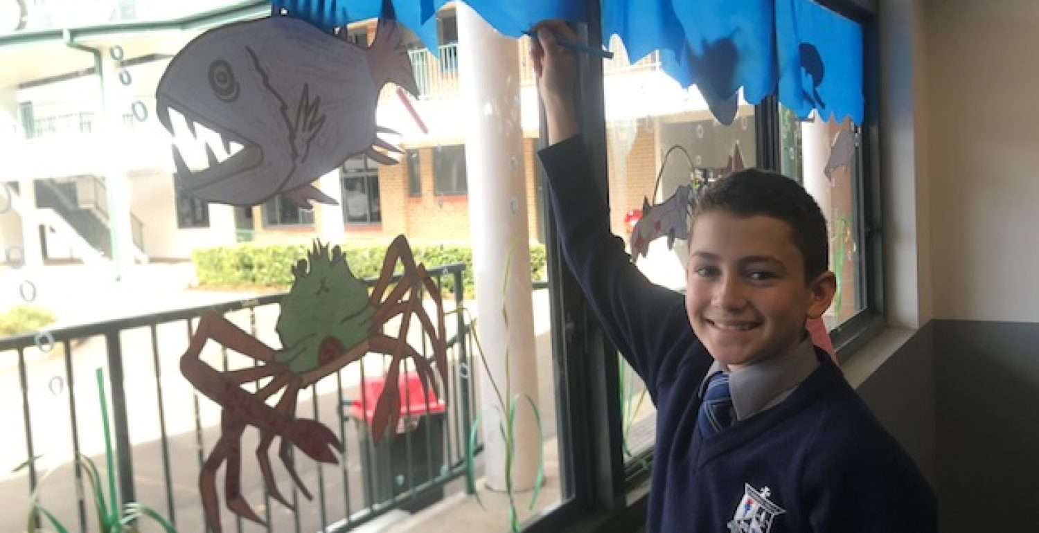 Science Week – Year 7 Design Fish Species