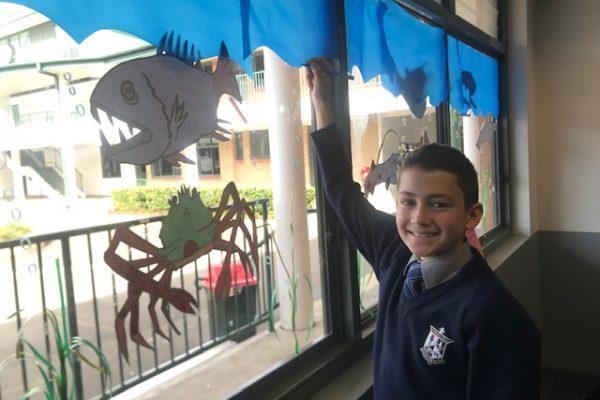 Science Week – Year 7 Design Fish Species